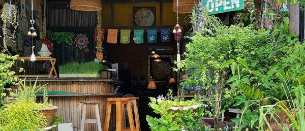 https://islandgemtours.com/wp-content/uploads/2018/01/Thai-Organics-600x258.jpg